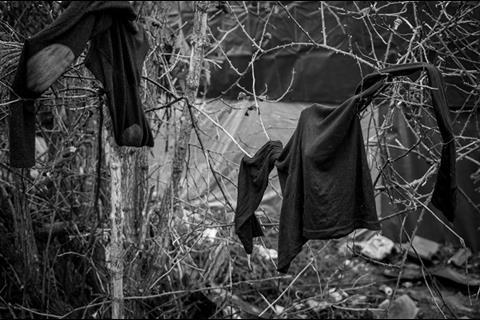 Jungle washing line